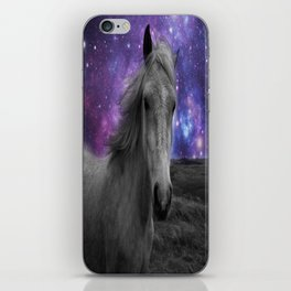 Horse Rides & Galaxy skies muted iPhone Skin