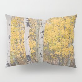 Naked Trees and Fall Leaves Pillow Sham
