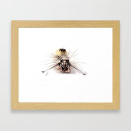 Catepillar on my table Framed Art Print