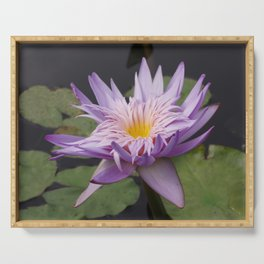 Rosy lavender water lily Serving Tray