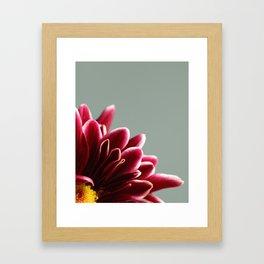 015 Flower Framed Art Print