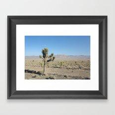 Joshua Tree Desert Framed Art Print
