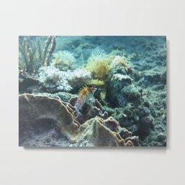 Bright watcher fish Metal Print