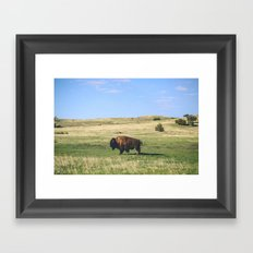 Badland Bison Framed Art Print