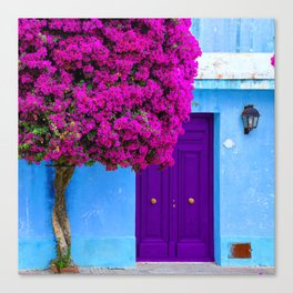 Beautiful Bougainvillea Canvas Print
