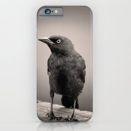Goth Grackle iPhone Case