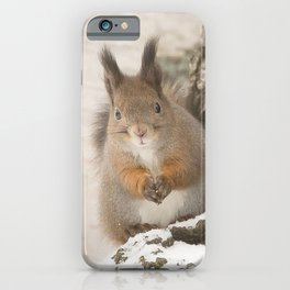 Hi there - what's up? #decor #society6 #buyart iPhone Case