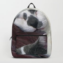 Cat Napping Backpack