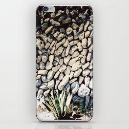 cactus... iPhone Skin