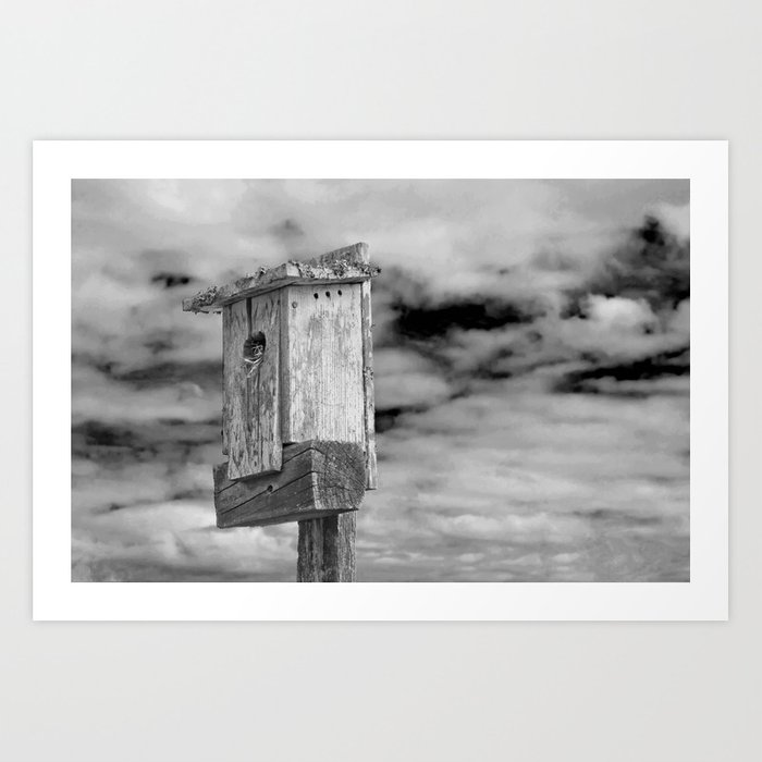 Of Birds and Houses Art Print