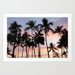 Tropical Palm Trees Sunset in Mexico Art Print