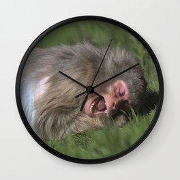 """Catching Flies"" Wall Clock"