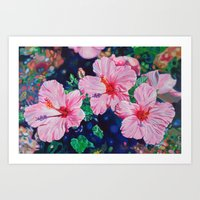 hibiscus Art Prints featuring Hibiscus by Morgan Ralston