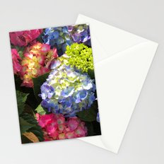 Colorful Hydrangea Flowers Stationery Cards