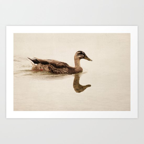 a summer swim Art Print