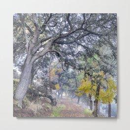 Mountain path. Autumn dreams. Sierra Nevada Metal Print