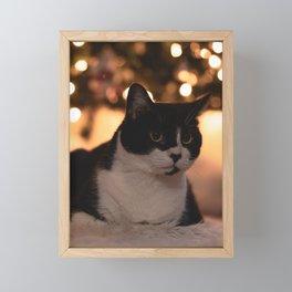 Cat by Christmas tree Framed Mini Art Print