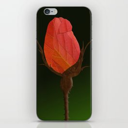 Autumn Rosebuds iPhone Skin