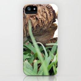 Mellow Mushrooms iPhone Case