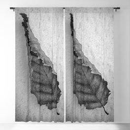 Frozen Leaf. Blackout Curtain