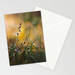 Beyond the Imagination Stationery Cards