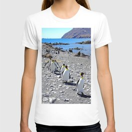 King Penguins returning to the colony T-shirt
