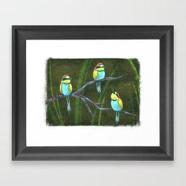Bee-eaters Framed Art Print