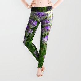 The Lavender Arch Leggings