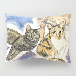 Alfie, Arnold, and Lilo  Pillow Sham