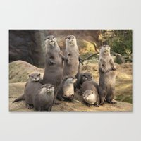 otters Canvas Prints featuring Otters  by Rob Hawkins Photography
