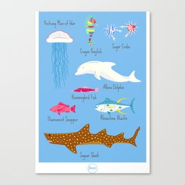 The Life Aquatic Fish Chart Canvas Print