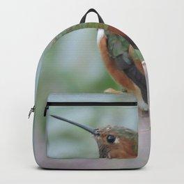 Allen's Hummingbird Sentinel Backpack