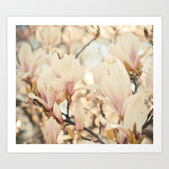 Magnolia and Cream Art Print