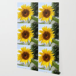 une seule fleur Wallpaper