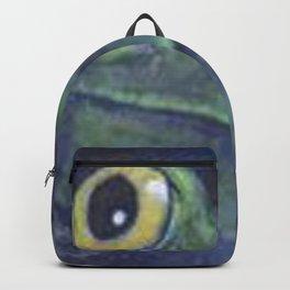 M89 Backpack