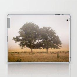 Morning's Mist Laptop & iPad Skin