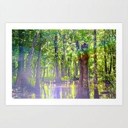 Beauty in the Swamp Art Print