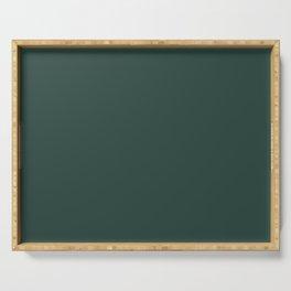 BM Hunter Green 2041-10 - Trending Color 2019 - Solid Color Serving Tray