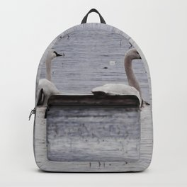 Then there were six Backpack
