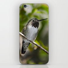 A Little Happiness iPhone & iPod Skin
