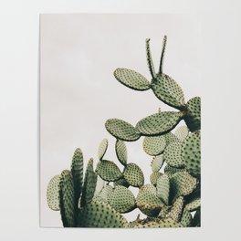Cactus on blue sky #society6 #decor #buyart Poster