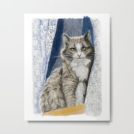 Grey cat  Sitting in Window  Metal Print