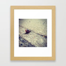 Snailing Around Framed Art Print