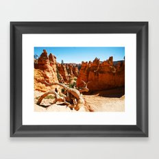 Bryce Canyon National Park. Utah, USA Framed Art Print
