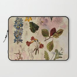 Botanical Study #1, Vintage Botanical Illustration Collage Laptop Sleeve