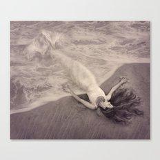 Mermaid Dream Canvas Print