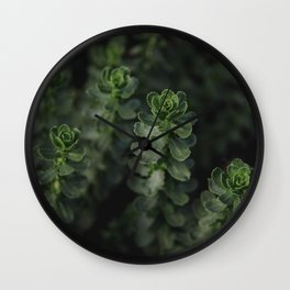 wild succulents Wall Clock