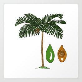 Areca Palm Art Print