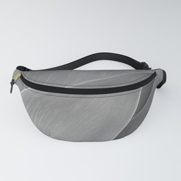 Agave Succulent Photographic Print Fanny Pack