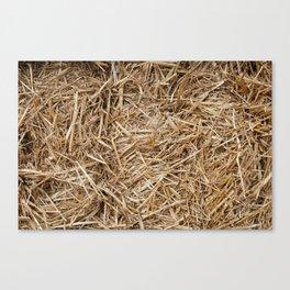 Hay day Canvas Print